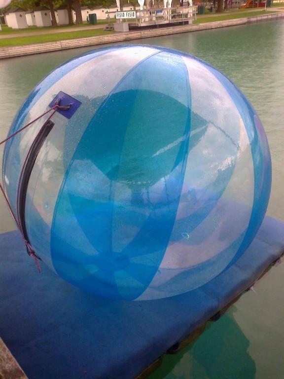 aquazorbing ball human hamster water walking. Black Bedroom Furniture Sets. Home Design Ideas
